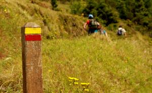 trilho pedeste Pico Vara